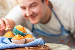 Delicious muffins Royalty Free Stock Photos