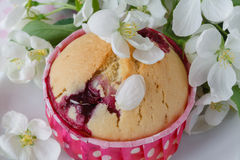 Delicious muffins with apple. Flower Royalty Free Stock Photography