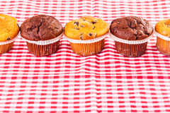 Delicious muffins in a row. Some delicious homemade muffins with chocolate drops on a red and white checkered tablecloth Stock Photos