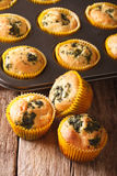 Delicious Muffins with spinach and feta cheese close-up. vertica Royalty Free Stock Images