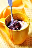 Delicious Mug Cake, chocolate cherry cake cooked in a cup in the microwave Royalty Free Stock Images