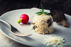 Delicious mushroom risotto with parmesan cheese Stock Photo