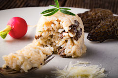 Delicious mushroom risotto with parmesan cheese Stock Images