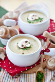 Delicious Mushroom soup Stock Photography