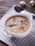 Delicious mushroom soup Stock Image