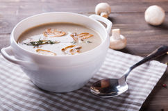 Delicious mushroom soup Stock Images