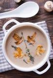 Delicious mushroom soup Stock Photos