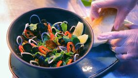 Luxury seafood restaurant delicious dish presentation - fresh mussels served with vegetables and croutons stock video