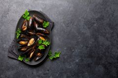Delicious mussels with tomato sauce and parsley royalty free stock photo