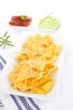 Delicious nachos. Stock Image
