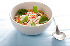 Delicious noodles dish Stock Images