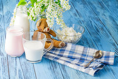 Delicious, nutritious and fresh plain yogurt and milk bottle. Delicious, nutritious and fresh plain yogurt and milk bottle Royalty Free Stock Photos