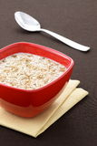 Delicious oatmeal Royalty Free Stock Photography