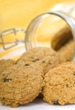 Delicious oatmeal raisin cookies Stock Images