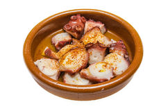 Delicious octopus Spanish tapa. Stock Photography