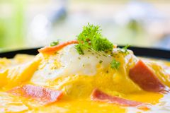 Delicious Omelet ham fusion food from egg, delicious Omelet ham. Delicious fusion food from egg, delicious Omelet ham parsley and origano on top of rice in stock photography