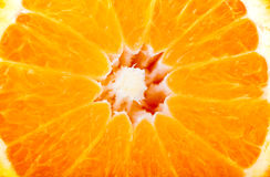 Delicious orange - background Royalty Free Stock Photography