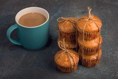 Delicious orange muffins for breakfast royalty free stock photography