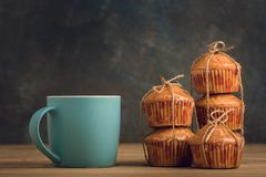 Delicious orange muffins for breakfast royalty free stock image