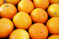 Delicious oranges Stock Photos