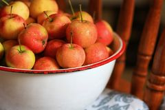Crabapples in a bowl. Delicious organic crabapples in an antique bowl Royalty Free Stock Photo