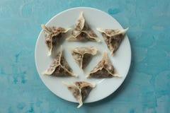 Delicious oriental Dim Sum dumplings on blue background. Delicious oriental Dim Sum dumplings homemade stock images