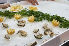Delicious oysters at market. Detail of delicious oysters in a market in italy Royalty Free Stock Photography