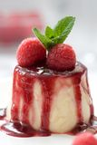 Delicious panna cotta dessert Royalty Free Stock Photography