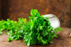 Delicious Parsley sprigs in a brown wicker basket and wooden board. Garden parsley herbs. Organic effective source of anti-oxidant. Parsley sprigs in a brown royalty free stock photography