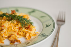 Delicious Pasta with Dill Royalty Free Stock Images