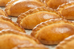 Delicious pastries on a baking sheet. Royalty Free Stock Image