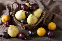Delicious pears  and plums on a rustic wooden table Stock Images