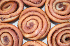 Delicious Pecan Wheels Royalty Free Stock Image