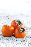 Delicious persimmons on white snow Royalty Free Stock Photography