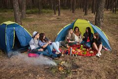Delicious picnic food and drink tourist friends Stock Images