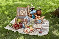 Delicious picnic spread with food and wine Stock Photography