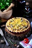 Delicious pie with chicken meat, eggplant, mushrooms, onion and cheese. Stock Photos