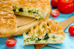 Delicious pie with spinach and cottage cheese Royalty Free Stock Images