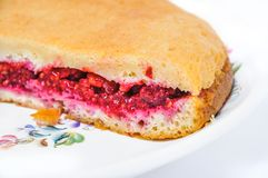 A piece of homemade cake filled with fresh raspberries. A delicious piece of homemade cake filled with fresh raspberries Stock Image