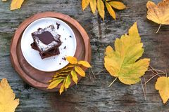 Delicious pieces of brownie cake with coconut flakes and a pattern of a leaf on top, on a white plate and a wooden background. Aro royalty free stock image