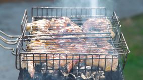 Chicken Wings on the Grill with Flames. Delicious Pieces of Chicken Meat on Grill with Fire Flames in Slow Motion. Barbecue Party Delicious Food on the Grill stock video footage