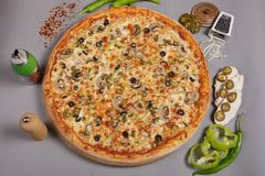 Delicious pizza Mexicana. Delicious pizza Mexicana with tomato sauce, mushrooms and chilli peppers with seasoning. Spicy food, made at home. Ingredients for royalty free stock photography