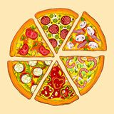 Delicious pizza. Six kinds. Stock Image