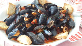 a delicious plate of mussels Royalty Free Stock Photos