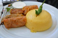 Delicious plate with stiffed cabbage and polenta royalty free stock photography