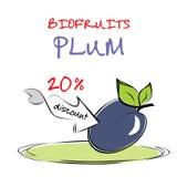 Delicious plum. Freehand vector illustration Stock Illustration