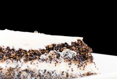 Delicious poppy seed cake. Royalty Free Stock Image