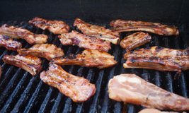 Delicious pork ribs on the grill Stock Image
