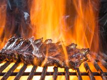 Delicious pork spareribs on cast-iron grill grate Stock Photo