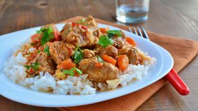 Delicious pork stew with rice stock photos